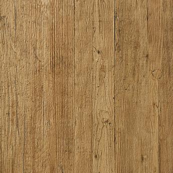 Roots Oak
