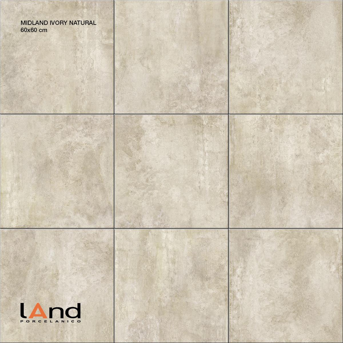 Midland Ivory